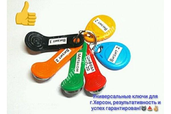Универсальные домофонные ключи купить.